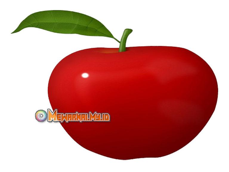 download gambar mewarnai buah apel