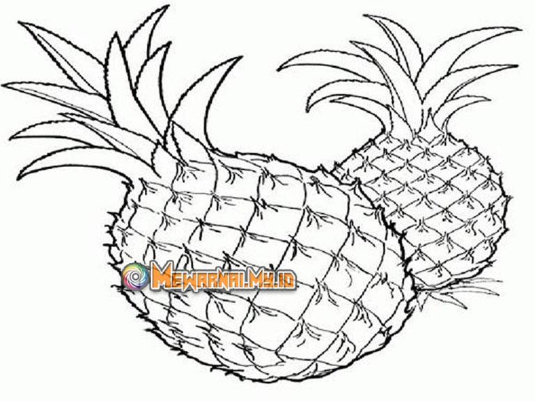 gambar mewarnai nanas untuk anak tk