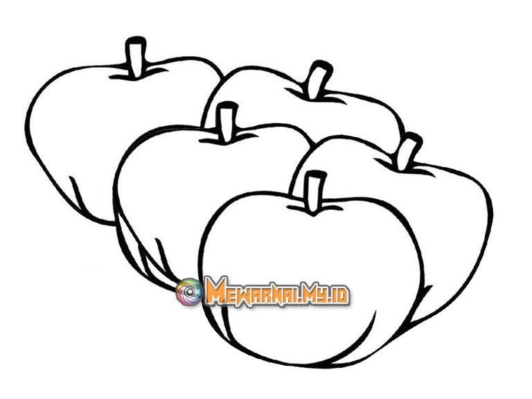 mewarnai gambar buah apel hijau terbaru