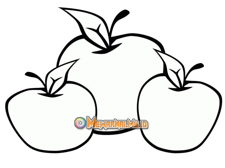 mewarnai sketsa gambar apel